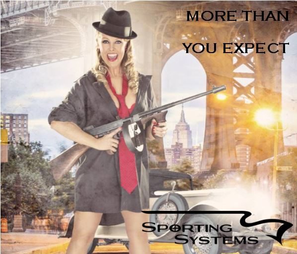 Sporting Systems Gun Shop. More than you expect.